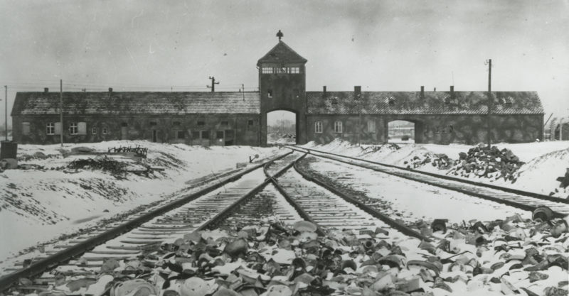 Auschwitz Learn the History