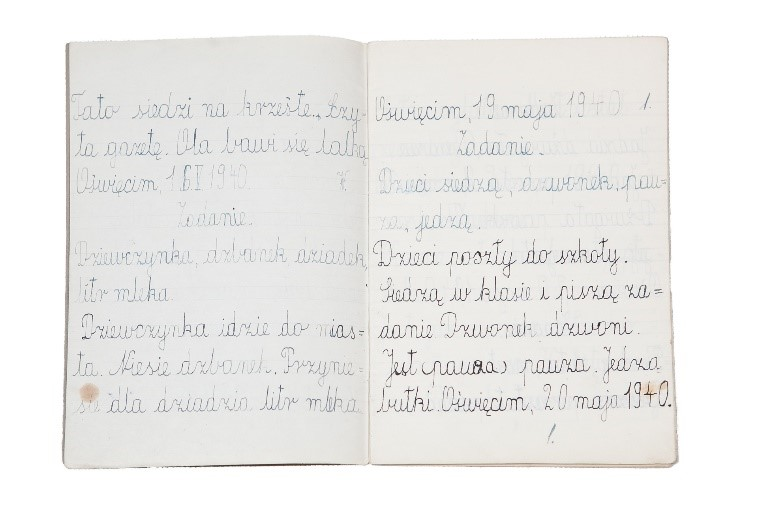 Henryk Enoch's Notebook