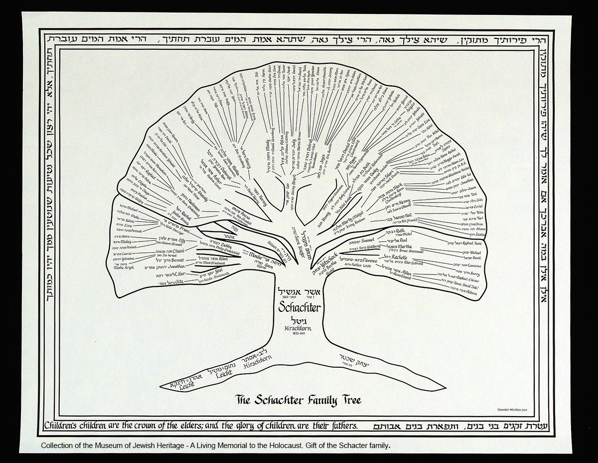 Schachter Family Tree